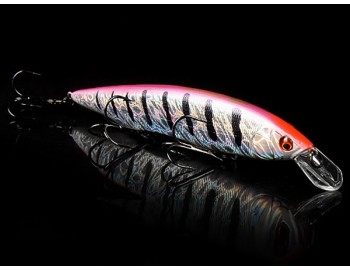 Bearking Kanata 160F цвет P Rainbow Perch
